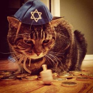 zionist-warrior