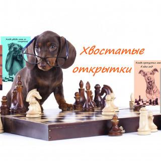 Шахматные открытки